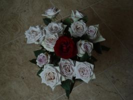 roses by Lady-Leviathan104-24