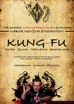 Kung-fu poster by S-A-V-I-0-R