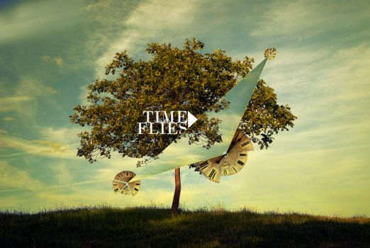 Time flies by jego0320