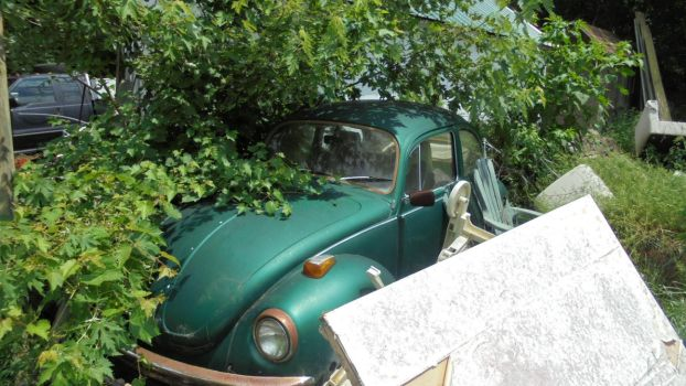 Lonely Vw Bug by HemiLover35001213