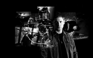 Dean Winchester by Carnal-Spiral