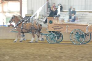 Topsfield Fair, Horse Handler Competition 13 by Miss-Tbones