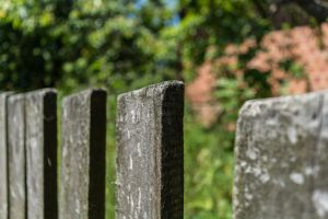 Looking for bokeh - fence by czater