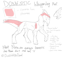 Domestic WhipperJeg Ref by DuskWolfAtDawn
