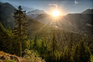 Sunset in Rainier national park by arnaudperret
