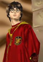 Quidditch-Harry cg by Luna-June