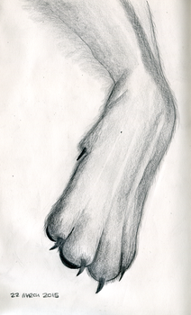 ArtBuddy - Foot studies - 04 - March 2015 by Summitwulf
