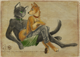 Shibe and the Cate by barish-ki-boond