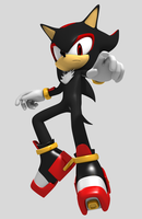 Shadow the hedgehog 2012 by Argos90
