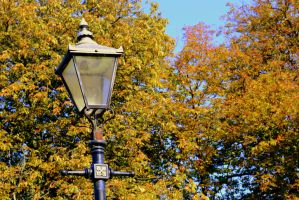 Autumn Lampost by sasha-sunshine0