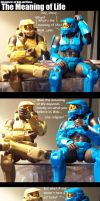 HALO: Meaning of life by ArpegiusWolf