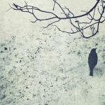 wait in the snow by sternenfern