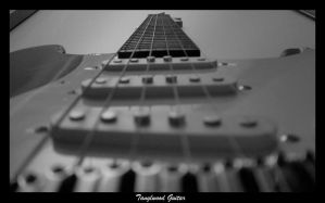 Tanglewood Guitar by lucaport