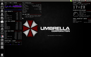 Umbrella Conky by archaeobibliologist