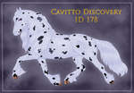 Cavitto Discovery 178 by ThatDenver