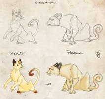 Pokedex: Meowth and Persian by ShiNo-theWoLf