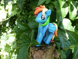 Rainbow Dash Relaxing In The Trees by SakuraSculpture