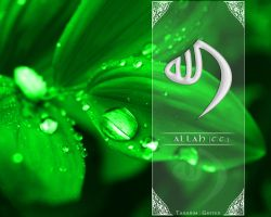ALLAH by gritex