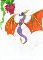 Spyro and Flower by goina