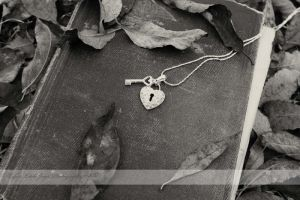 Lonely Heart by LLJPhotography