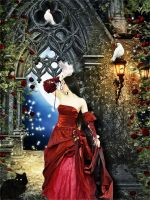 Lady in Red by tinca2