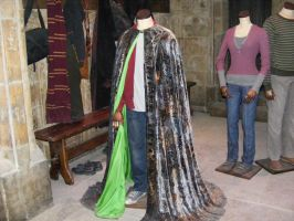 The Invisabilty cloak Leavesden by VaL-DeViAnT