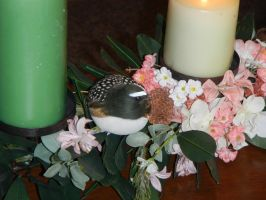 Bird, flowers and candels by BVS-stock