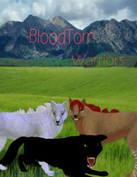 BloodTorn Cover by blindingcolorHyena