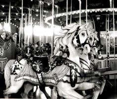 Carousel by TheRoseStills