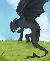 toothless on the cliff by tsurime