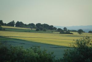 Meadow Pasture Landscape 7 by LuDa-Stock