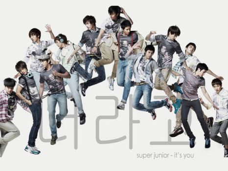 Super Junior - It's You by DandiYang
