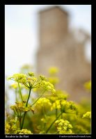 Reculver in the Past by Andrew-and-Seven