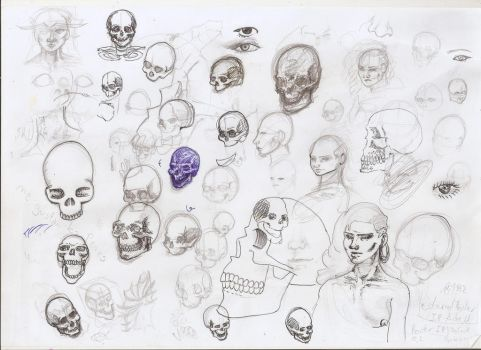 Skull sketches with african girl by Carneo