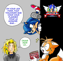 Sonic 4 problemes physiques by RaianOnzika