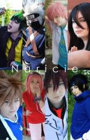 Cosplays of 2012 by Naricie