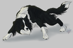[Border Collie] by HeikeART