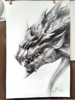 Rathalos by tokoeka