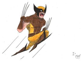 Wolverine by sfdesignproject