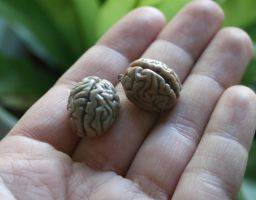 Brain pendants by ihni