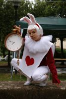Follow The White Rabbit by AnaMaria88