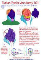 Turian Anatomy by Creativegreenbeans