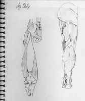 Leg Study by matrix7