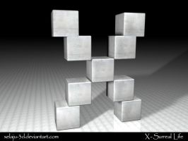 X of Boxes or Boxed X by xelaju-3D