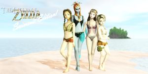 LoZ: Swimsuit Edition Cover by DarklordIIID
