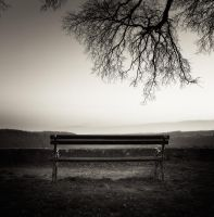 The bench... by denis2