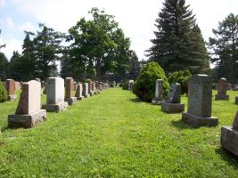 Greenwood Cemetary 3 by tune4jack