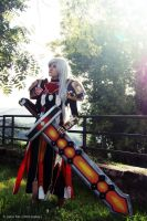 World of Warcraft Paladin Cosplay by brainsandwich