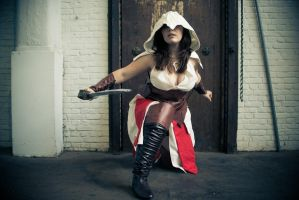 Assassin's Creed artwork by Will Murai by PeytonCosplay