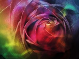 - Rainbow Rose - by relisabby